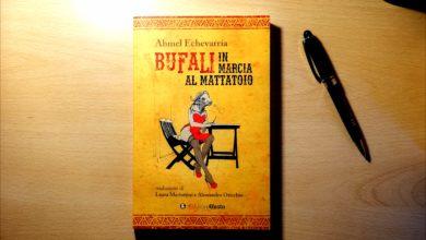ahmel echevarría bufali in marcia al mattatoio