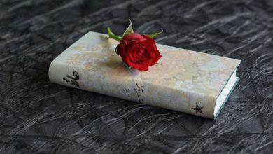 giornata mondiale del libro festa sant jordi