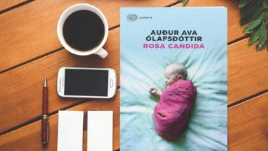 rosa candida Audur Ava Ólafsdóttir