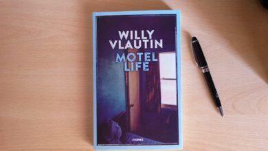 motel life willy vlautin